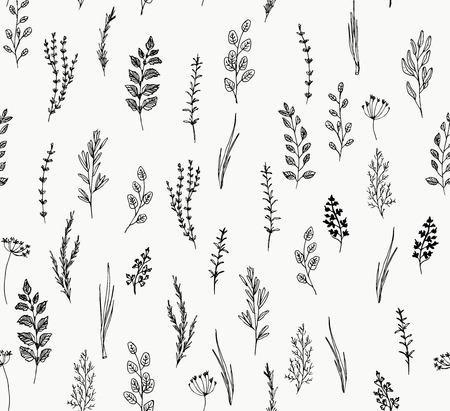 Reticolo senza giunte disegnato a mano di erba culinaria. Insieme disegnato a mano di erbe culinarie. Basilico e menta, rosmarino e salvia, timo e prezzemolo. Elementi del logo di food design Logo
