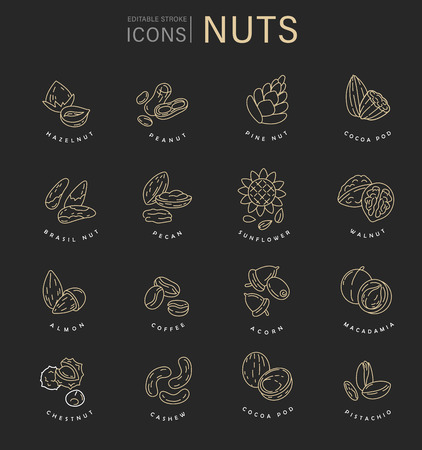 Vector icon and logo for nuts and seeds. Editable outline stroke size. Line flat contour, thin and linear design. Simple icons. Concept illustration. Sign, symbol, element. Illustration