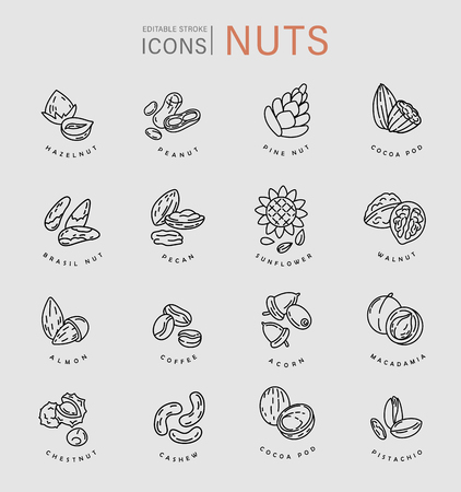 Vector icon and logo for nuts and seeds. Editable outline stroke size. Line flat contour, thin and linear design. Simple icons. Concept illustration. Sign, symbol, element. 矢量图像