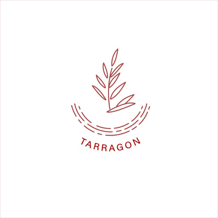 Vector icon and logo for spices and herbs. Editable outline stroke size. Line flat contour, thin and linear design. Simple icons. Concept illustration. Sign, symbol, element. Banco de Imagens - 114160108