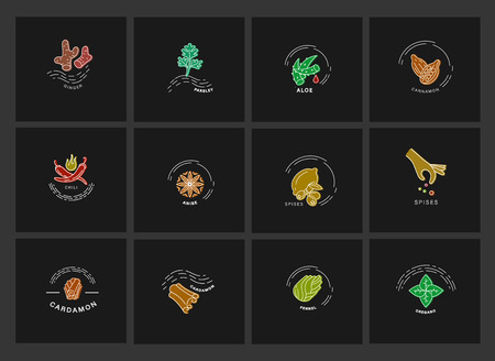Vector icon and logo for spices and herbs. Editable outline stroke size. Line flat contour, thin and linear design. Simple icons. Concept illustration. Sign, symbol, element. Фото со стока - 119440928