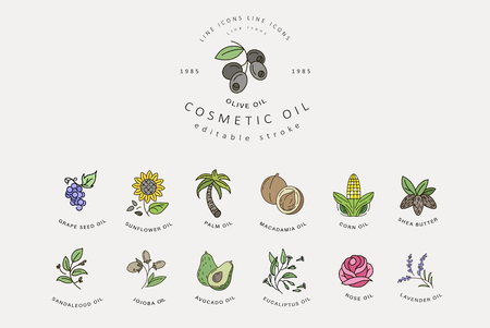 Vector icon and logo for natural cosmetics oil care dry skin. Editable outline stroke size. Line flat contour, thin and linear design. Simple icons. Concept illustration. Sign, symbol, element. Ilustração