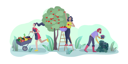 Harvesting and gardening people doing farming and garden job, pick berries, remove weeds, watering, planting, growing and transplant sprouts, lay ripe vegetables to box. Reaping crop concept