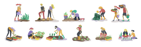 Harvesting and gardening people doing farming and garden job, pick berries, remove weeds, watering, planting, growing and transplant sprouts, lay ripe vegetables to box. Reaping crop concept Standard-Bild - 120199313