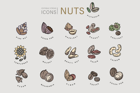 Vector icon and logo for nuts and seeds. Editable outline stroke size. Line flat contour, thin and linear design. Simple icons. Concept illustration. Sign, symbol, element. Ilustração