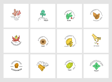 Vector icon and logo for spices and herbs. Editable outline stroke size. Line flat contour, thin and linear design. Simple icons. Concept illustration. Sign, symbol, element. Фото со стока - 120206837