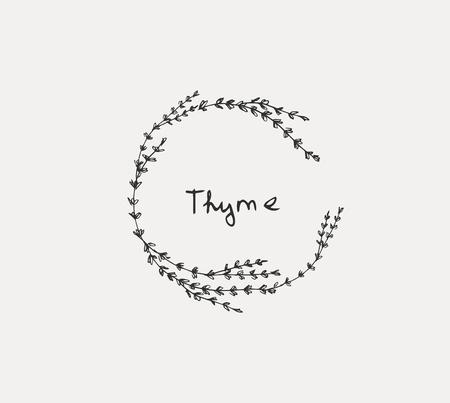 Insieme disegnato a mano di erbe culinarie. Basilico e menta, rosmarino e salvia, timo e prezzemolo. Elementi del logo di food design