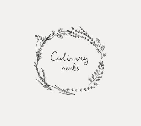 Insieme disegnato a mano di erbe culinarie. Basilico e menta, rosmarino e salvia, timo e prezzemolo.