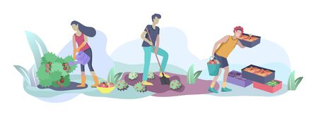 Harvesting and gardening people doing farming and garden job, pick berries, remove weeds, watering, planting, growing and transplant sprouts, lay ripe vegetables to box. Reaping crop concept Foto de archivo - 128149734