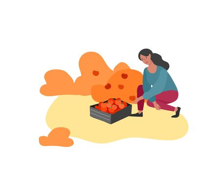 Girl gathering crops or seasonal harvest, collecting ripe vegetables. Women work on a farm. Agricultural worker in autumn. Cartoon vector illustration