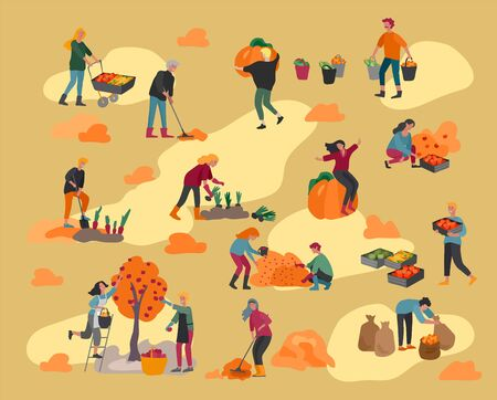 People gathering crops or seasonal harvest, collecting ripe vegetables, picking fruits and berries, remove leaves. Men, women work on a farm. Agricultural workers in autumn. Cartoon vector illustration Vector Illustration