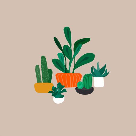 Potted plants collection. Urban jungle, trendy home decor with plants, cactus, tropical leaves. Set of house indoor plant vector hand drawn cartoon illustration Ilustração