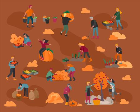 People gathering crops or seasonal harvest, collecting ripe vegetables, picking fruits and berries, remove leaves. Men, women work on a farm. Agricultural workers in autumn. Cartoon vector illustratio  イラスト・ベクター素材