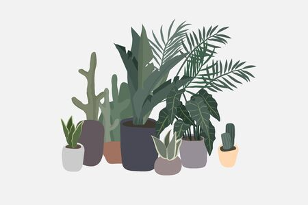 Potted plants collection. Urban jungle, trendy home decor with plants, cactus, tropical leaves. Set of house indoor plant vector hand drawn cartoon illustration