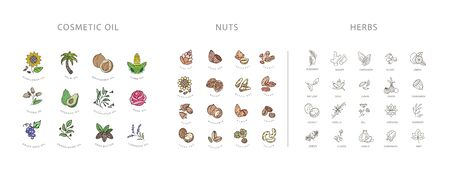 Vector icon  collection for spices, herbs and nuts. Natural cosmetics oil care dry skin. Editable outline stroke size. Line flat contour, thin and linear design. Simple icons. Sign, symbol, element.