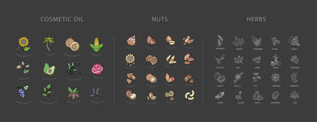 Vector icon collection for spices, herbs and nuts. Natural cosmetics oil care dry skin. Editable outline stroke size. Line flat contour, thin and linear design. Simple icons. Sign, symbol, element. Illustration