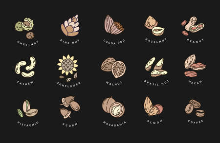 Vector icon  for nuts and seeds. Editable outline stroke size. Line flat contour, thin and linear design. Simple icons. Concept illustration. Sign, symbol, element.