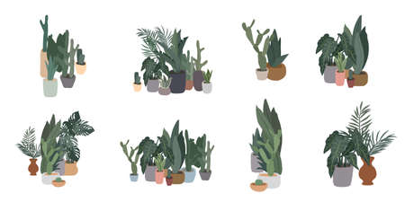 Potted plants collection. Urban jungle, trendy home decor with plants, cactus, tropical leaves. Set of house indoor plant vector hand drawn cartoon illustration Stock Illustratie