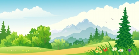 panoramic sky: Vector illustration of a beautiful forest on the mountains