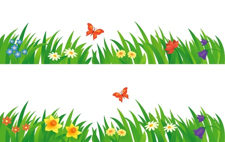 camomile flower: Vector set with summer grass and flowers.