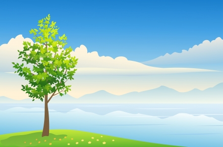 Vector beautiful summer scenic. Stock Vector - 20108530
