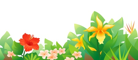 Vector illustration of beautiful tropical flowers. Stock Vector - 20108531