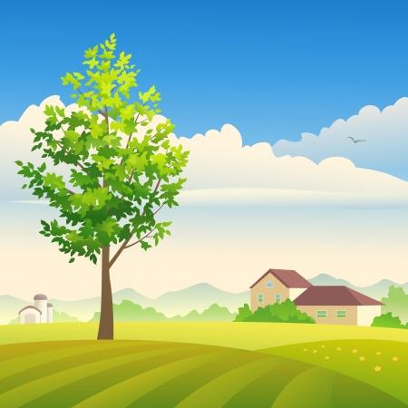 Vector illustratie van een zomer of lente boerderij.