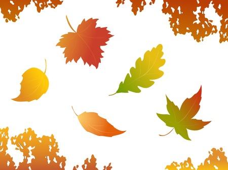 falling autumn leaves - design elements Illustration