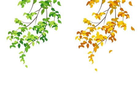 set with summer and autumn branches Stock Vector - 21130466