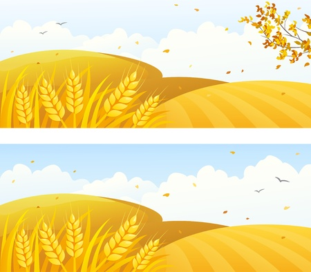 fields: Vector autumn backgrounds with crop fields and falling leaves