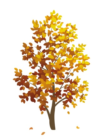 Vector autumn tree with falling leaves Stock Vector - 21652994