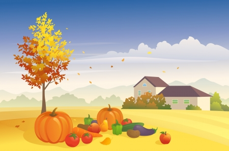 Vector illustration  harvest day at the farm Stock Vector - 21652999