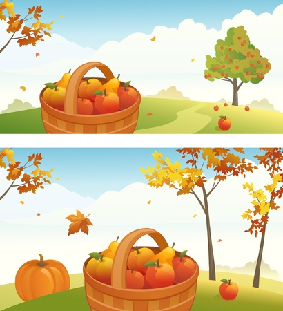 orchards: Vector harvest backgrounds with ripe apples, pears and pumpkin Illustration