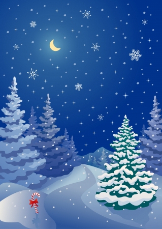 non urban scene: Vector illustration of a snowy Christmas night