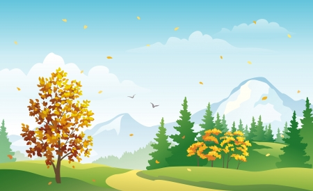 Vector illustration of a fall forest landscape