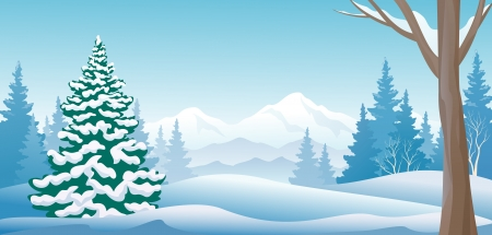 panoramic sky: Vector illustration of a winter forest scene