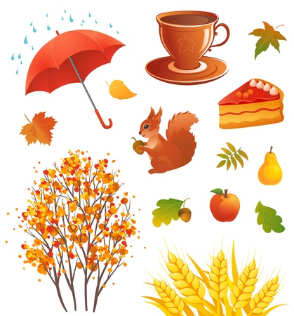 Vector illustration of autumn design elements Vector