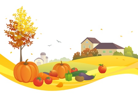 non urban scene: Vector illustration of an autumn harvest Illustration