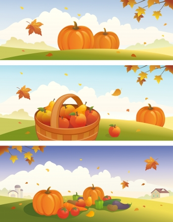Vector Thanksgiving and fall backgrounds with ripe fruit and vegetables