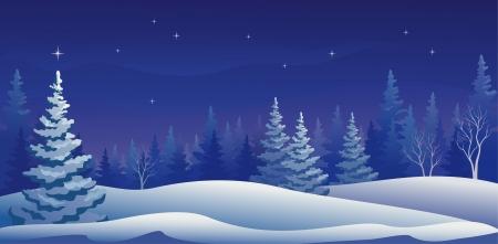 Vektor-Illustration einer schönen Winternacht Wald