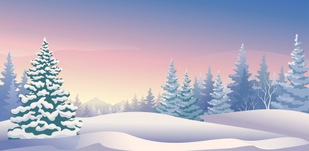 winter tree: Vector illustration of a beautiful winter morning Illustration