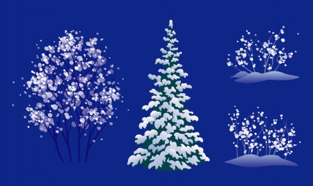 rime: Vector set of winter trees, isolated on blue background