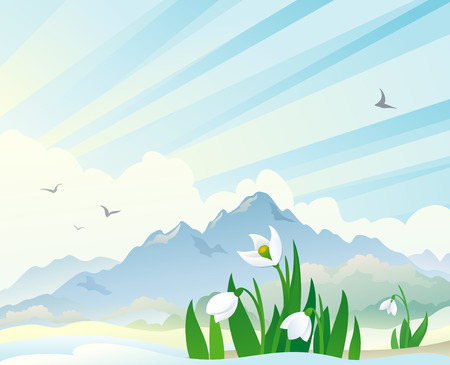 Vector illustration of a spring landscape with snowdrops Stock Vector - 26019198