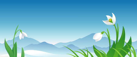 early spring: Vector spring banner with snowdrops