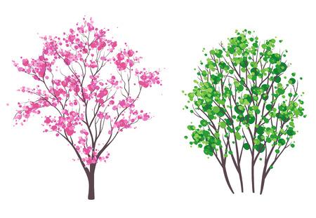 summer trees: Ilustraci�n vectorial de primavera y verano �rboles, aislado en blanco Vectores