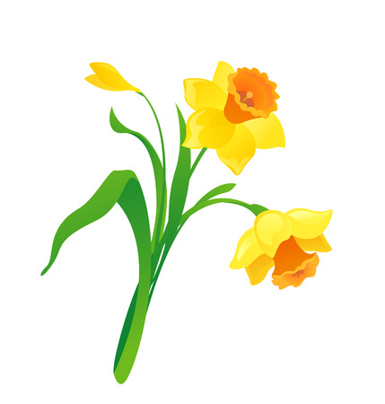 flower clip art: cartoon daffodil