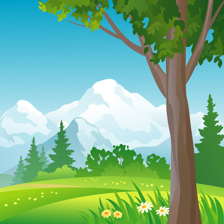 woodland scenery: mountain forest background