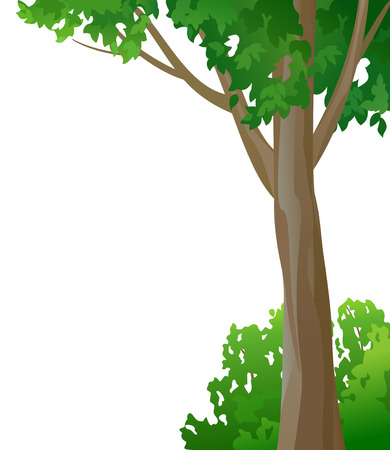 illustration tree and bush on a white background