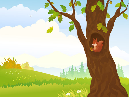 woodland scenery: Vector illustration of a autumn landscape with a squirrel