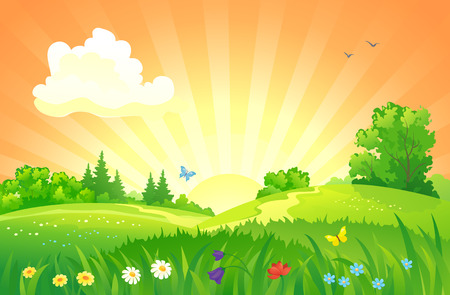 grass flower: illustration of a summer sunset landscape